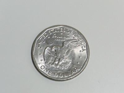 one-usd-coin-buthtub.jpg